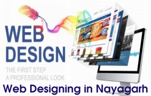 Best Web Designers in Visakhapatnam @3500Website